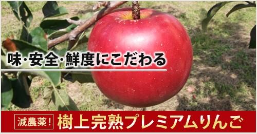 減農薬の藤原商店Yahoo!店